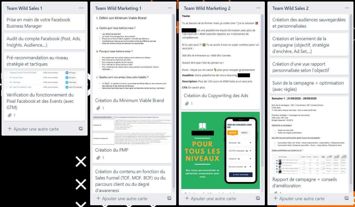 Exemple projet - Campagne FB Ads - Wild Agency